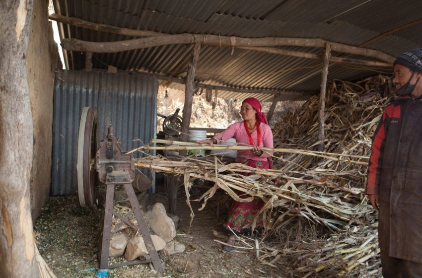 @SEforALLorg: To meet #SDG7, a systematic gender mainstreaming approach is called for in all #energy sector interventions, in order to enable more #women to participate in and benefit, via @energia_org👉  #SDG7Women